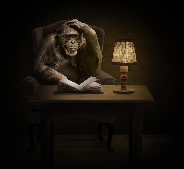 opice s knihou